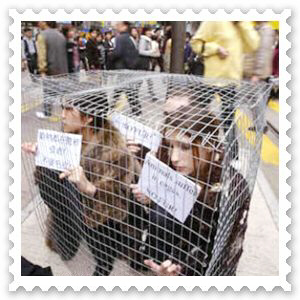 6 - Girls in Cage