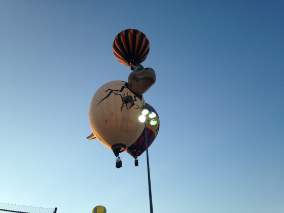 Balloons Back to the Egg
